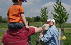 It's great fun to pet a lamb. Photo by M. Gezing